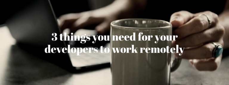 Things you need to work with your developer remotely